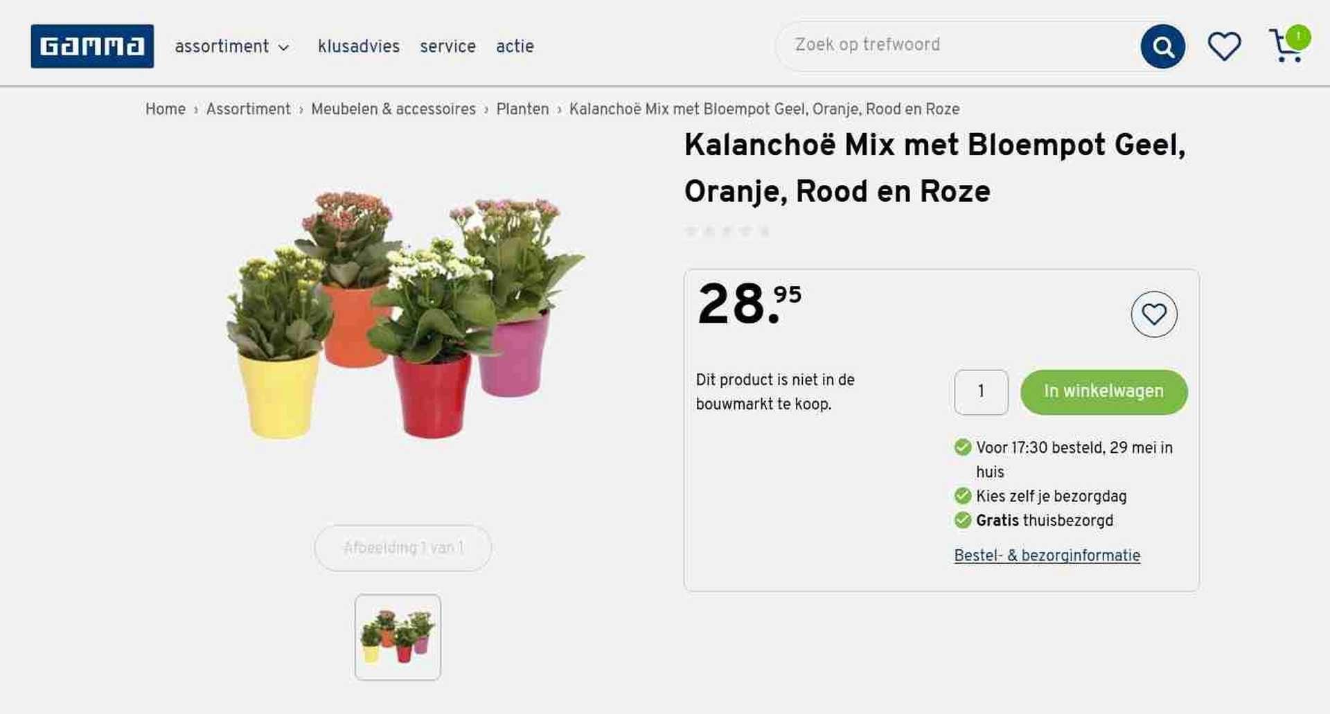 gamma bouwmarkt planten hoge prijs, duur
