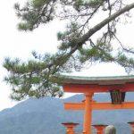 Het echte Japan: torii's en supermarkten (3/5)